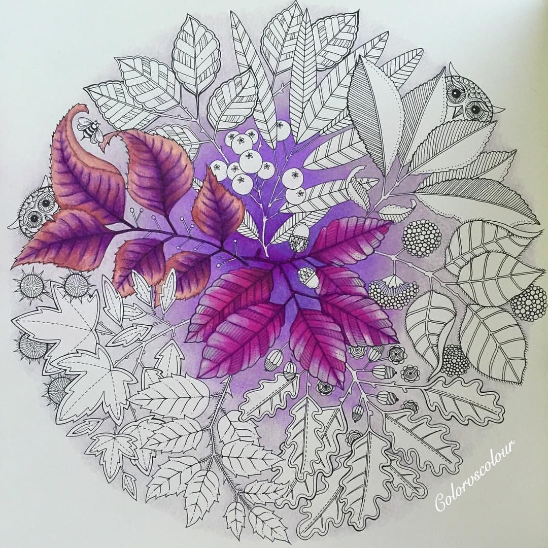 Secret garden coloring book website - Secretgarden If You Re Looking For The Top Coloring Books And Supplies