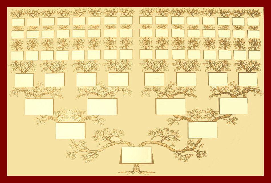 Quelles Sont Les Origines Génétiques Des Tunisiens Arbre Généalogique Arbre Généalogique Imprimable Arbre Généalogique Gratuit