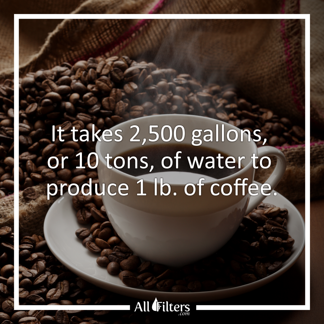 Water is the main ingredient to coffee. The right coffee