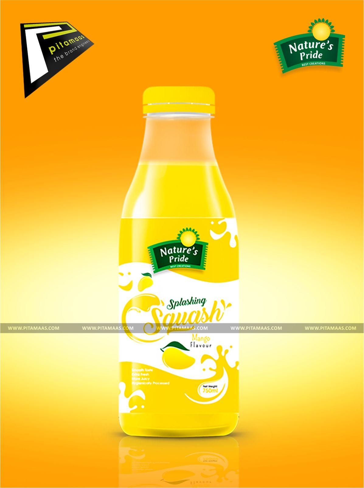 Punjab Best Product Packaging Design Company Pitamaas