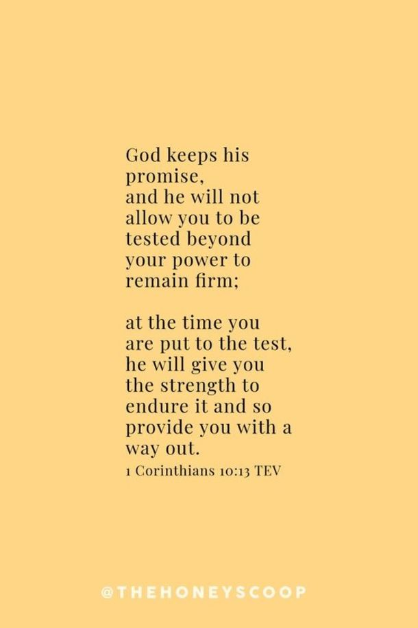 10 Bible Verses About Life