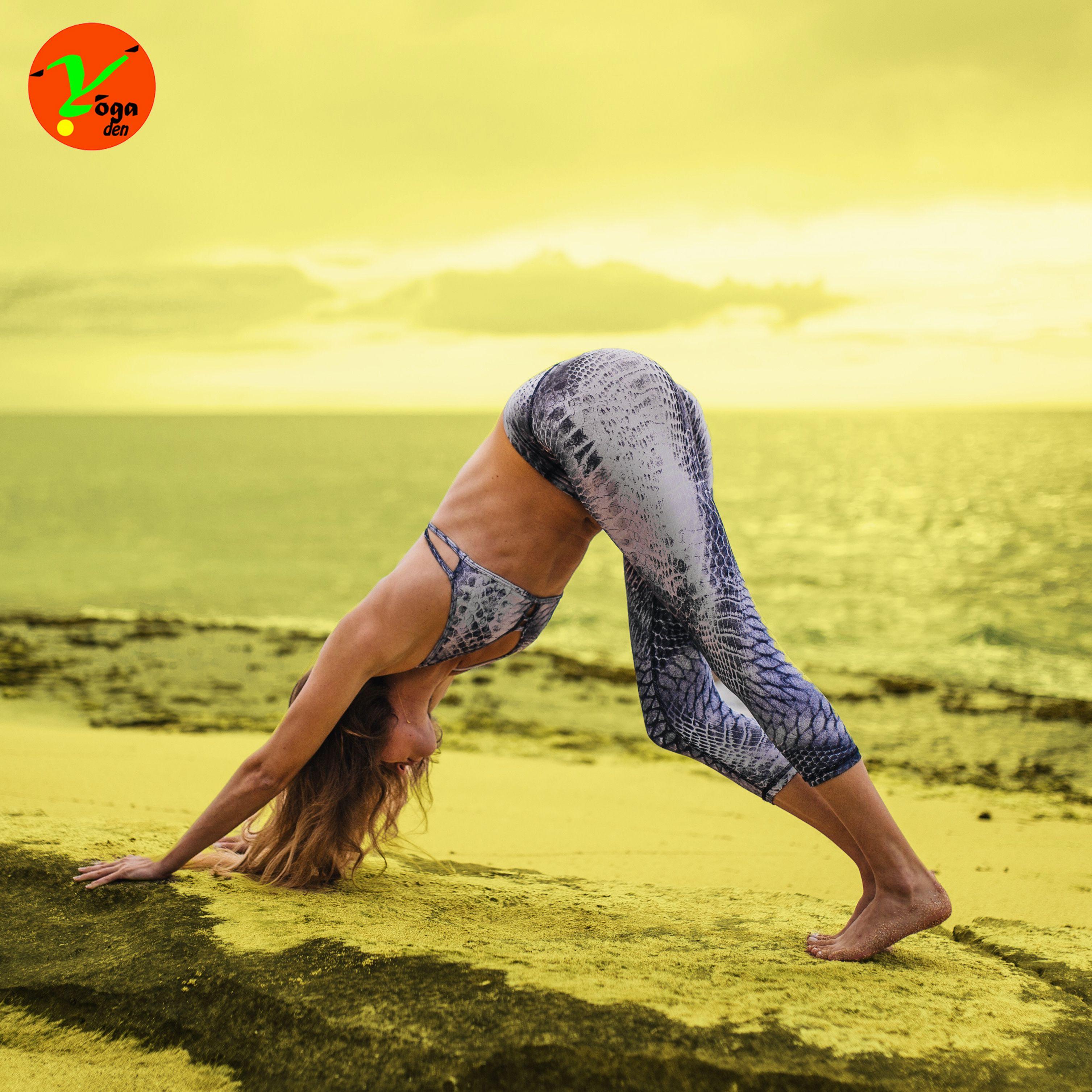 Downward-Facing Dog | Yoga poses, Poses, Yoga