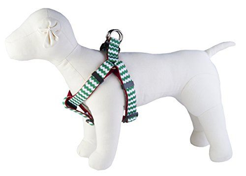 Paw Paws Usa Chevron Dog Harness Xsmall Greenred You Can Find