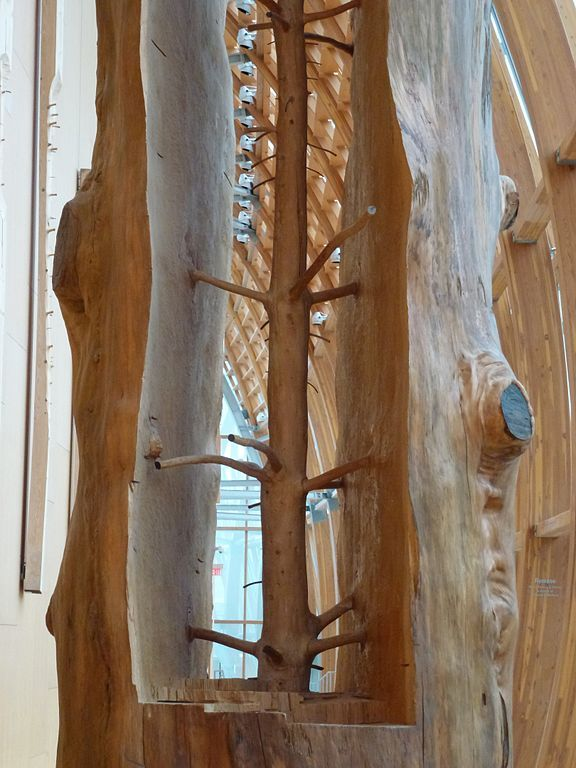 (A) Giuseppe Penone - The Hidden Life Within #UneSource