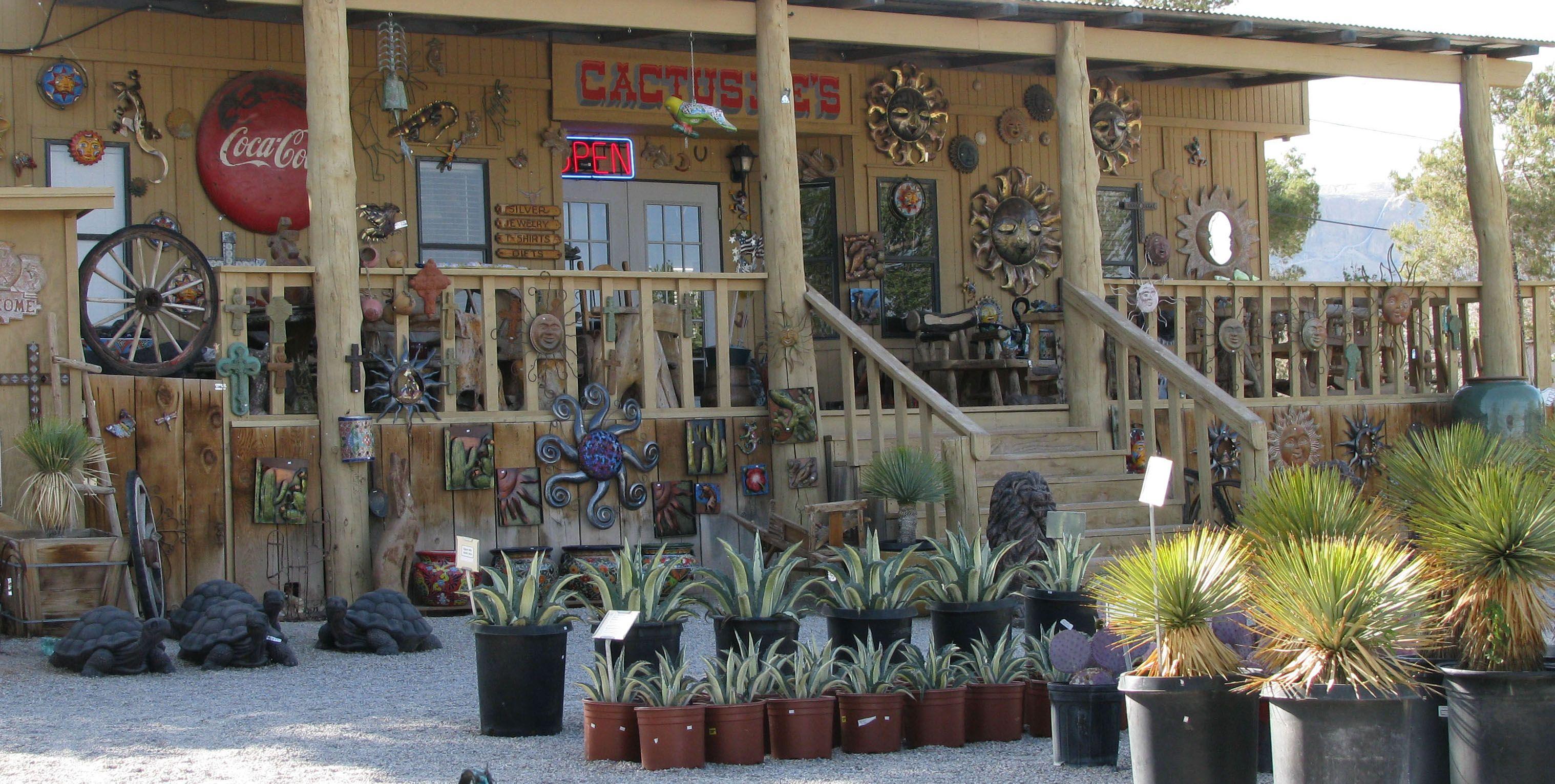 About Cactus Joe S Las Vegas Nursery
