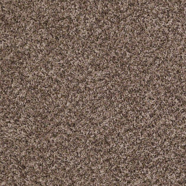 The Carpet We Picked Shaw Carpets Wicker