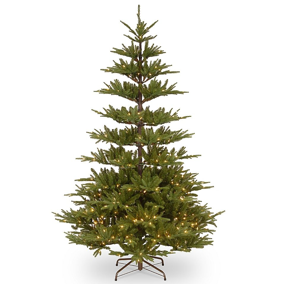 National Tree Company 7 5 Glenwood Fir With Clear Lights Christmas Tree Clear Lights Best Artificial Christmas Trees Artificial Christmas Tree