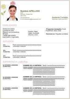Descargar Hoja De Vida Curriculum Vitae Formato Minerva 10 00