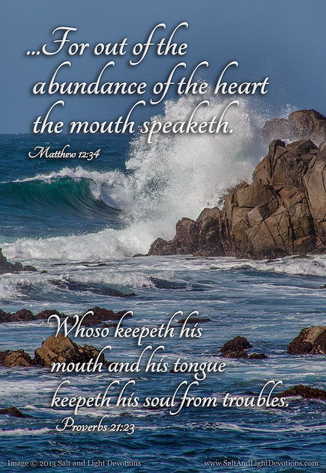 "Matthew 12:34b (1611 KJV !!!!) ""...for out of the abundance of the heart the mouth speaketh."" Proverbs 21:23 (1611 KJV !!!!) ""  Whoso keepeth his mouth and his tongue keepeth his soul from troubles."""