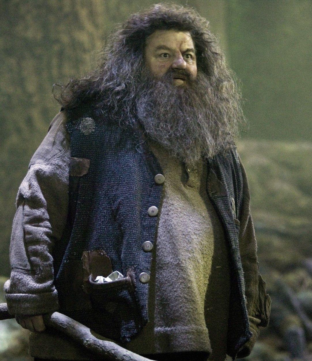 Rubeus Hagrid Harry Potter Wiki Harry Potter Films Rubeus Hagrid