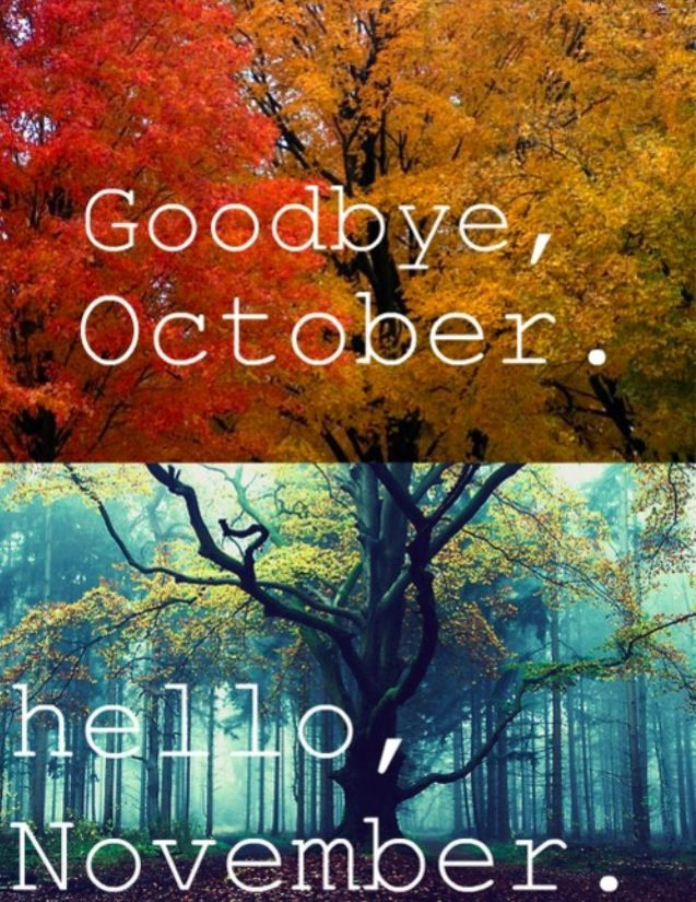 Marvelous Hello, November
