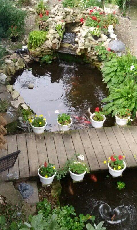 Love for our koi pond¡!!!!!!!! Pond Pinterest Estanques