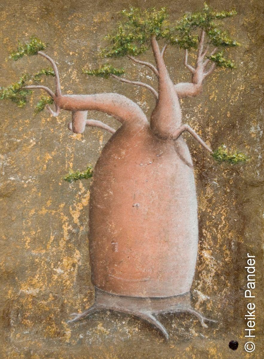 Heike Pander, Baobab