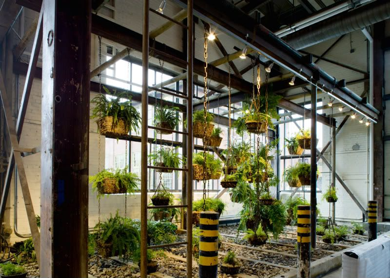 Free People office plants