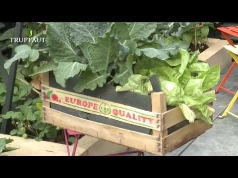 votre potager en pot youtube jardin pinterest. Black Bedroom Furniture Sets. Home Design Ideas
