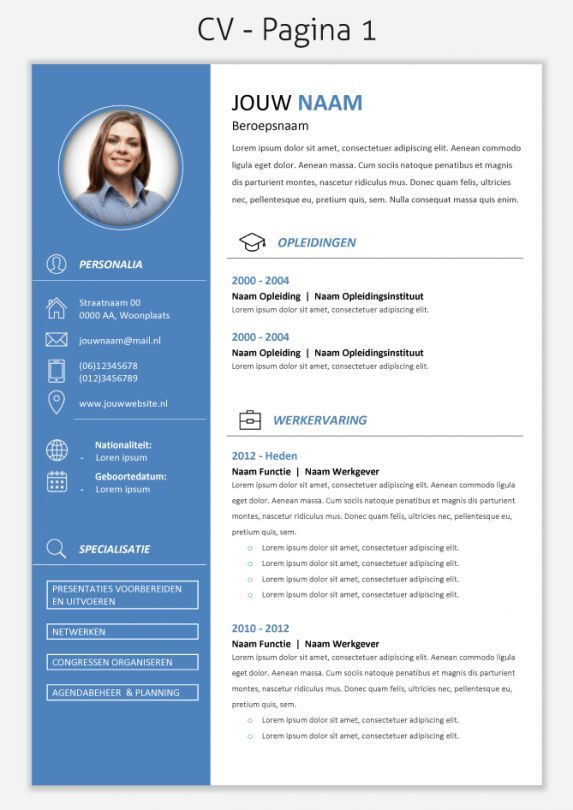 Cv Voorbeeld 299 Pag 1 Ardti Pinterest Cv Template Templates