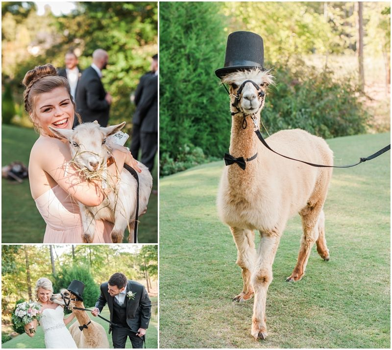 Chapel Hill Carriage House Wedding