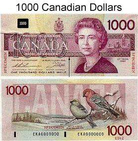 1000 dollar forex account