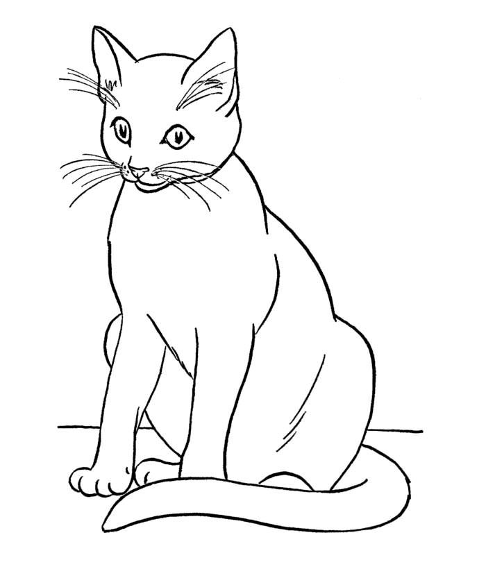 70 Animal Colouring Pages Free Download Print Cat Coloring Book Cat Coloring Page Animal Coloring Pages