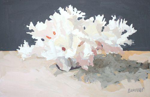 Coral by Elizabeth Mayville - GOUACHE