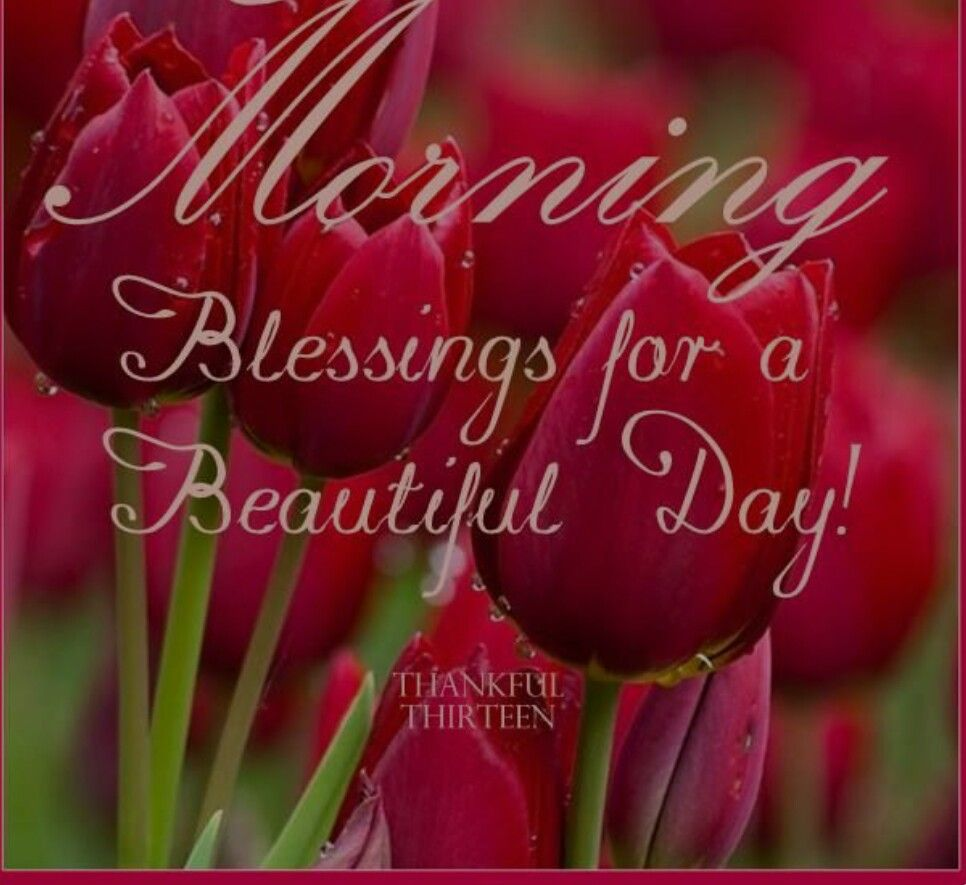 Morning blessings daily pictures wishes sayings in dutch and morning blessings kristyandbryce Gallery