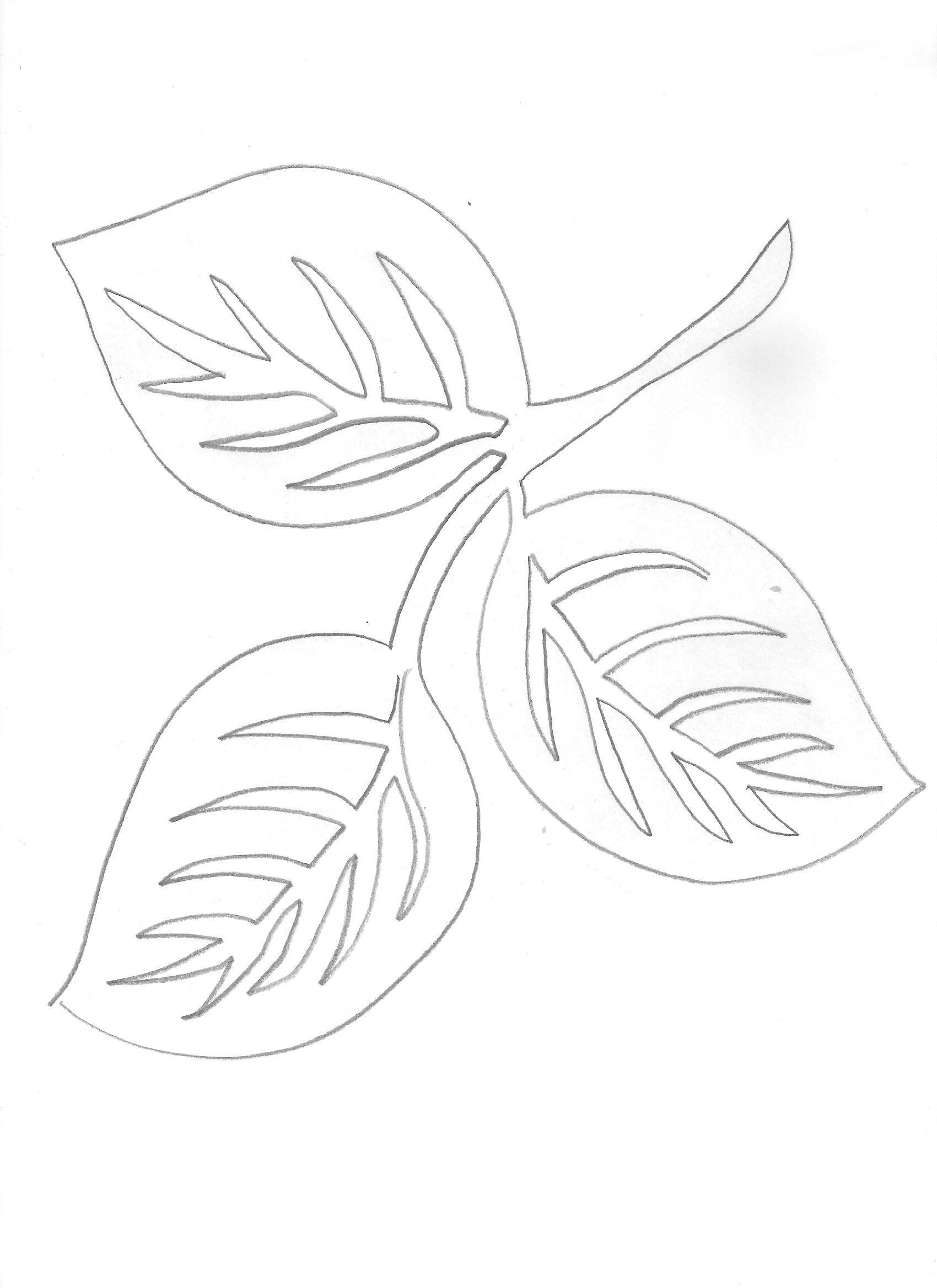 Pin de Евгения Себелева en шаблон (цветы и растения)   Pinterest ...