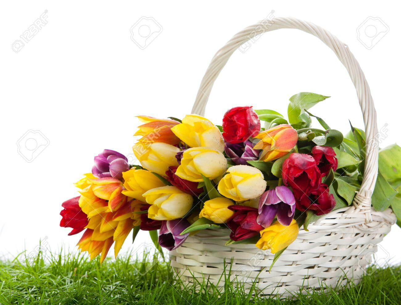 Pin by made on ses and flowers pinterest hamper image search beautiful flowers tulips research searching pretty flowers basket izmirmasajfo