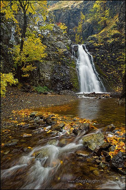 Dog Creek Falls - Washington