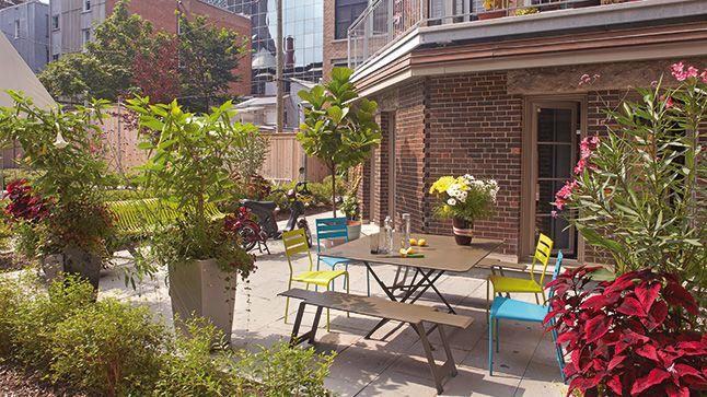 cultiver des arbustes en pots arbuste arbuste en pot. Black Bedroom Furniture Sets. Home Design Ideas
