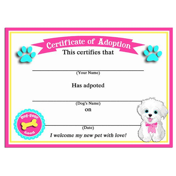 Puppy Dog Adoption Certificates - Instant Download - Maltese Sit - fresh cat birth certificate free printable