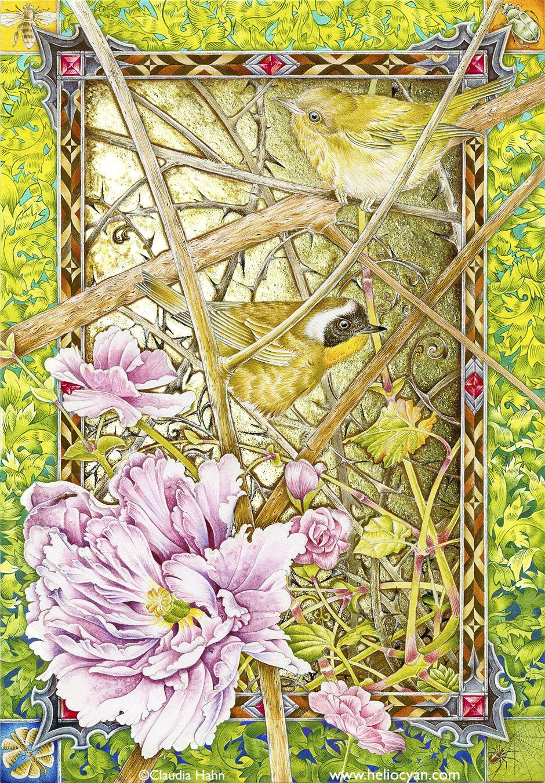 Common Yellowthroat warblers by Heliocyan.deviantart.com on @deviantART