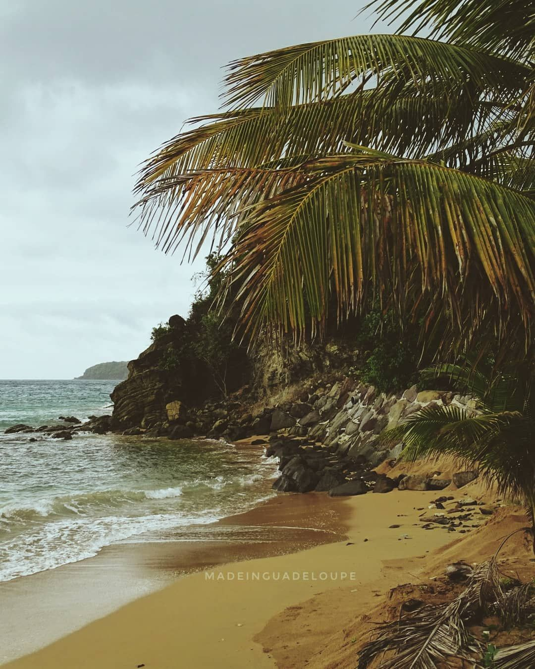 Guadeloupe Beach: So Peaceful... Guadeloupe 📍 🌴 (Caribbean