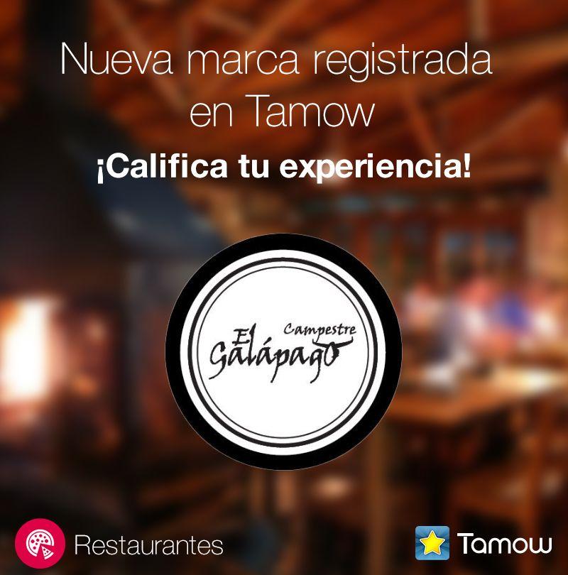 #Califica a El Galápago Campestre, un espectacular restaurante en Chía. Nueva marca registrada en Tamow.