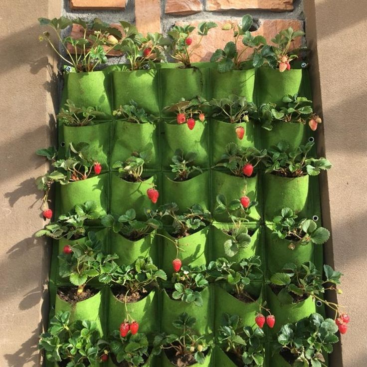 Outdoor 9 Pocket Indoor Balcony Herb Vertical Garden Wall