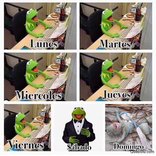 Ver Mas Memes Chistes Frases En Quebolu 3 Memes Chistes Muppets