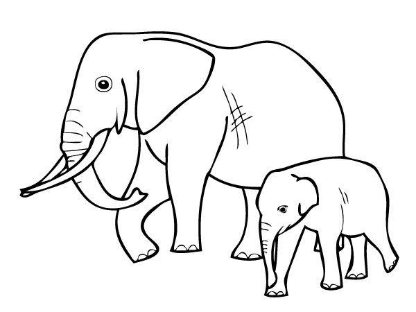 Elephant Coloriages Elephants Coloriages Animaux Coloriages