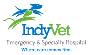 Emergency Care For Your Pet At Indyvet Indianapolis Emergency And Specialty Veterinarian Emergency Care Emergency Rehabilitation Therapy