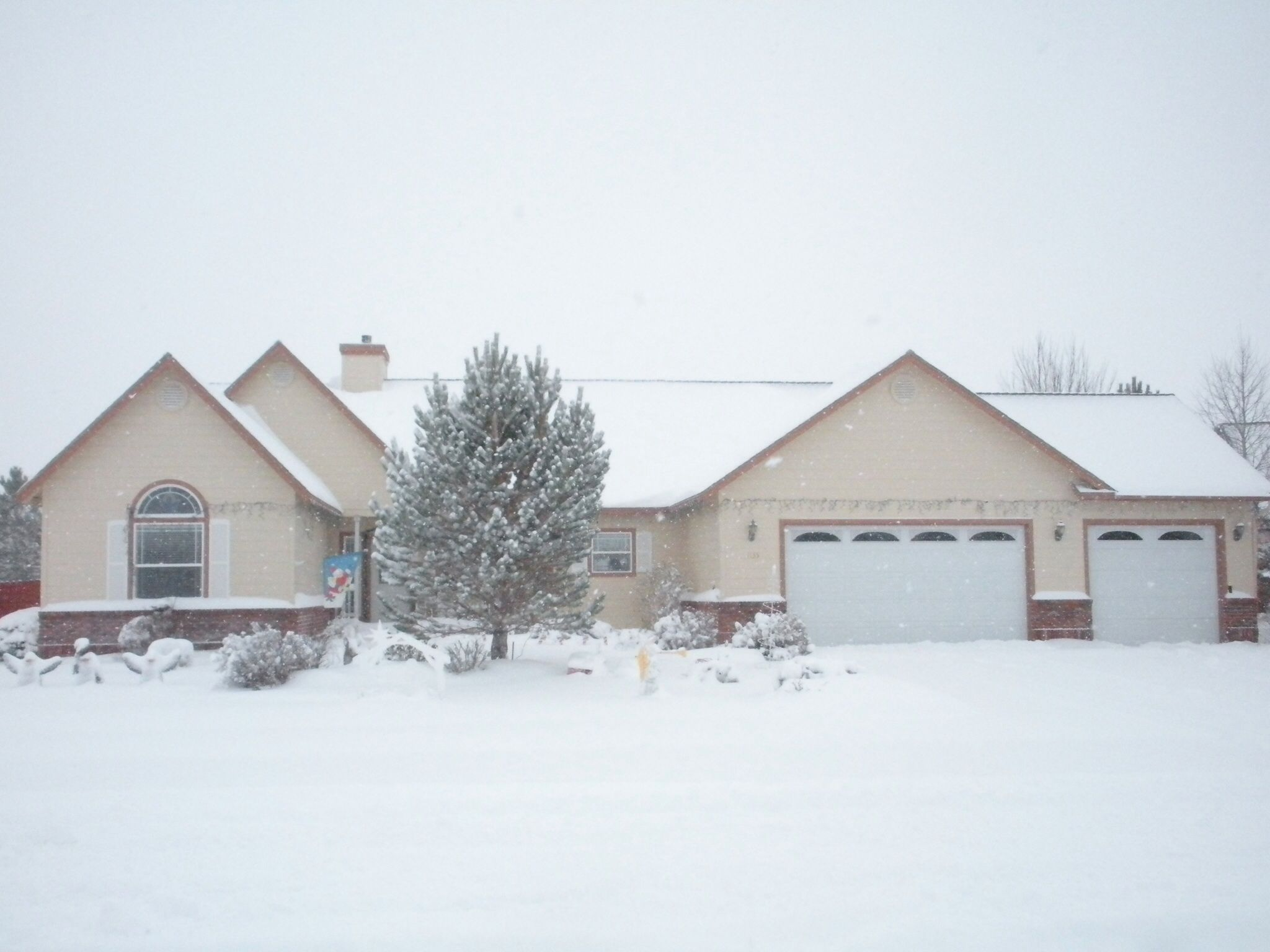 Our house in Minden, Nevada.