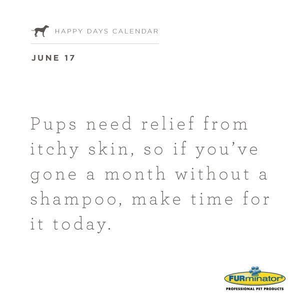 #Pups need relief from itchy skin, so if you've gone a month without a #shampoo, make time for it today.