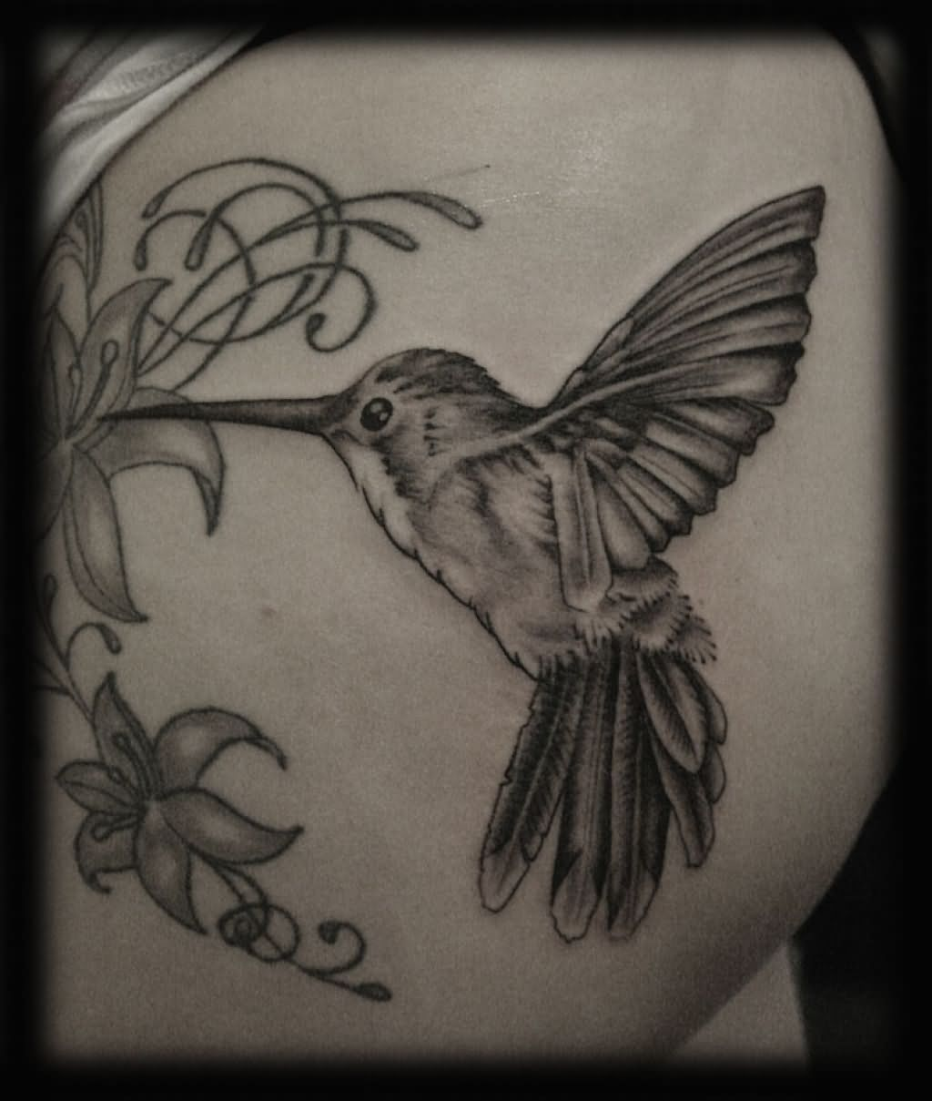 Gray Black And White Bedroom: Black And Grey Hummingbird Tattoo Design