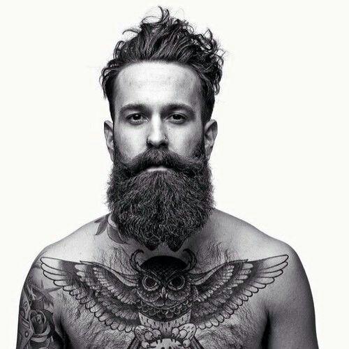 beard + owl