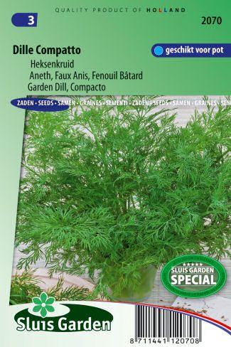 Semená byliniek : Semená, Kôpor záhradný Compacto 0,7g ±630 semien