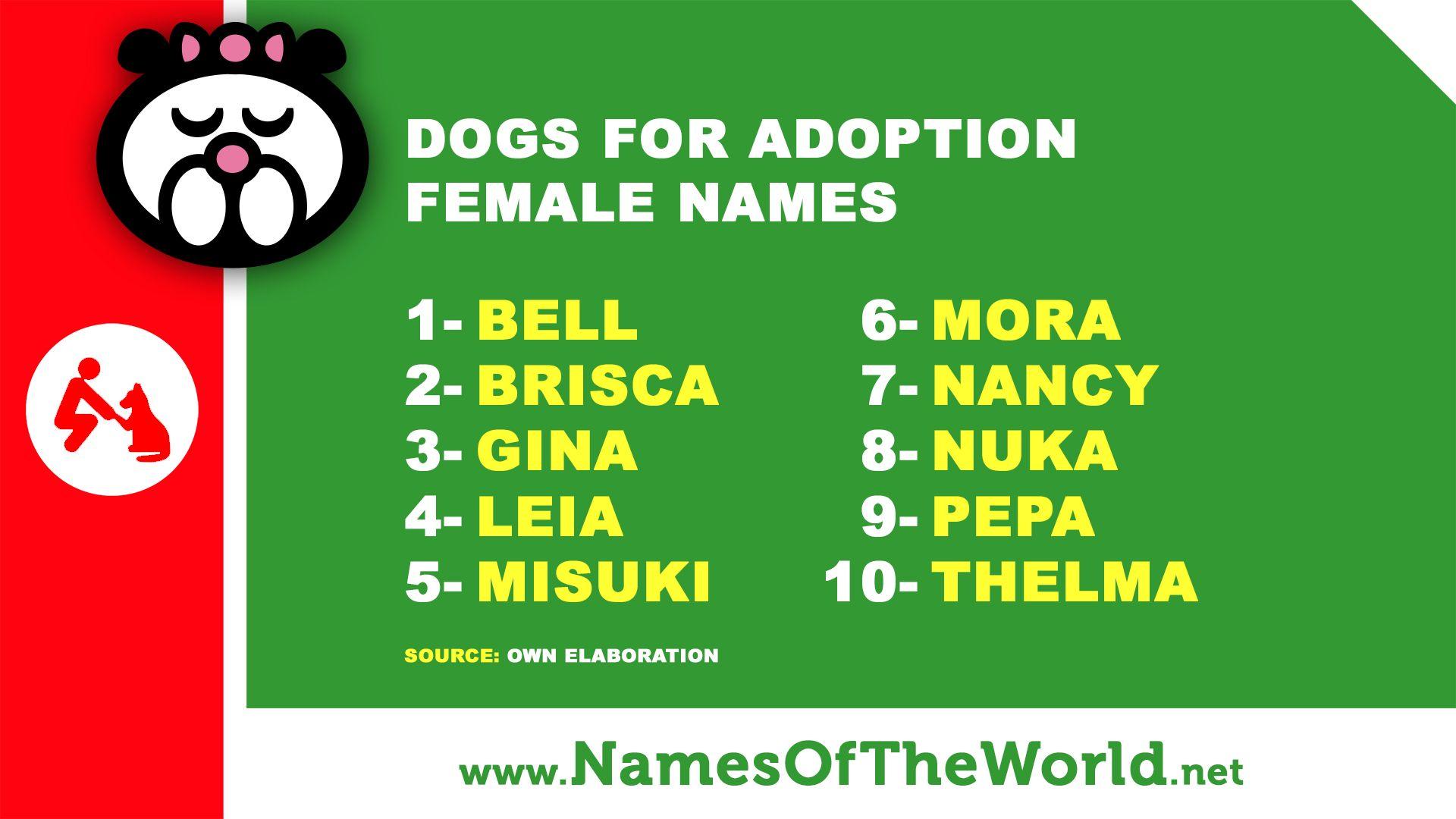 Pin On Pet Names Farm Names