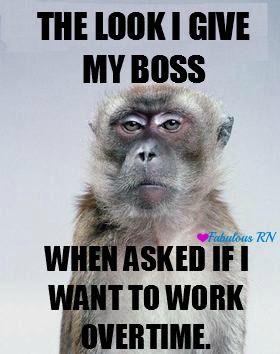 The Look I Give My Boss When Asked If I Want To Work Overtime Nurse Humor Nursing Humor Meme Monkey Meme Work Problems Working Pro Work Humor Nursing Memes Work Memes