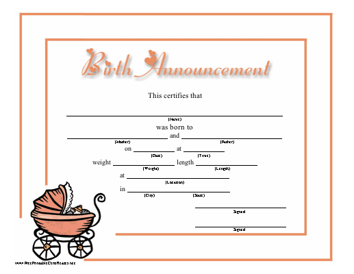 A fun printable birth certificate with a graphic of a baby chicks – Blank Birth Certificate Form