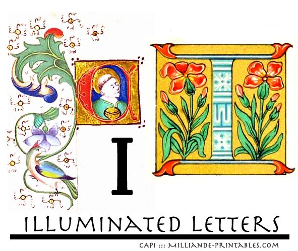 Decorative Letter B Ornamental Letterforms And Illuminated Letter