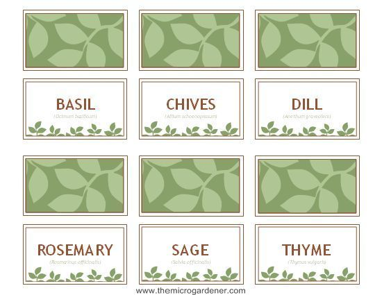 20 Diy Creative Plant Labels With Images Plant Labels