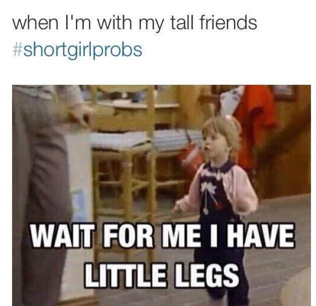 funny short girl memes