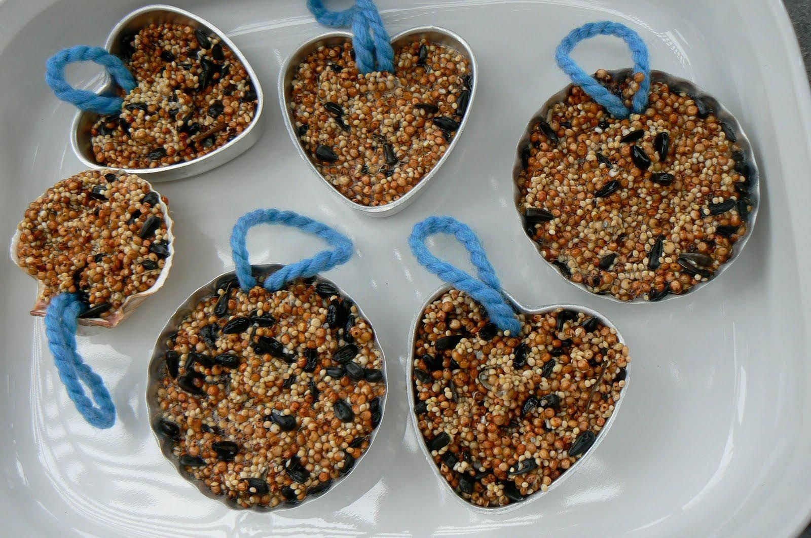 Bird seed cakes with gelatin bird feeders for kids to