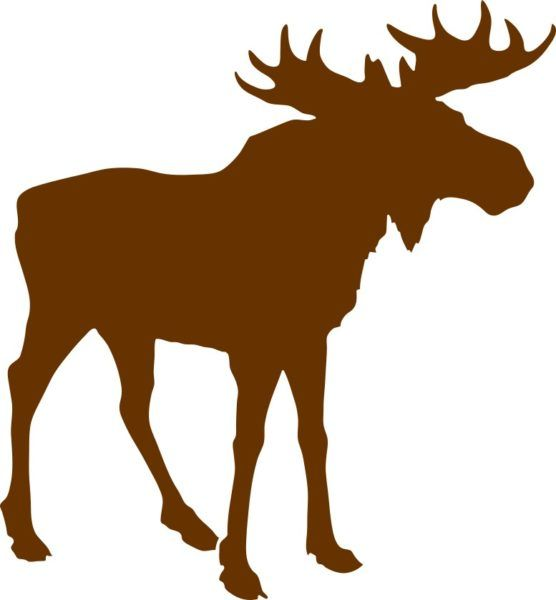 Brown bull moose sticker